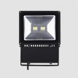 LED REFLEKTOR 100W HOBBY